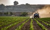 Otvoren javni poziv EU4AGRI – bespovratna sredstava za podršku investicijama u primarnu poljoprivrednu proizvodnju