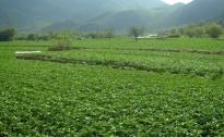Poziv poljoprivrednicima za dopunu dokumentacije