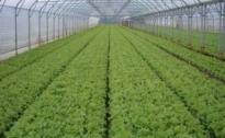 Obavijest o održavanju edukacije iz oblasti poljoprivrede proizvodnje